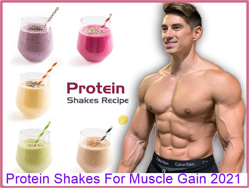 Protein Shakes For Muscle Gain
